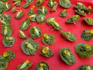 Cpie midi quercy samedi 21 juillet matin balade - Cuisiner les plantes sauvages ...